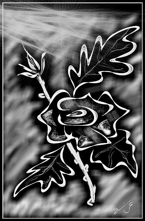 #black & white,#pencil art