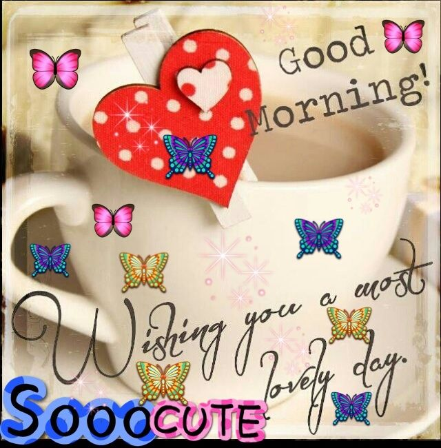 Good Morning To All Of U My Sweet Dearest Lovely Friend