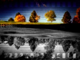 emotions nature colorful black & white color splash photography