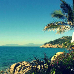 photography australia beach travel landscape summer townsville magnetic island