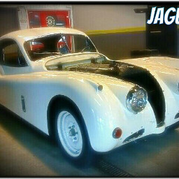 cars retro classiccar whitecar
