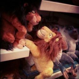 disney lionking photography cute emotions pets & animals